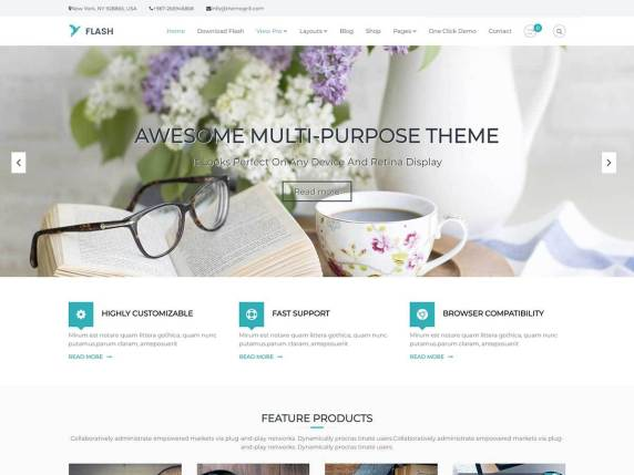 Flash WordPress Theme for Responsive WordPress Website